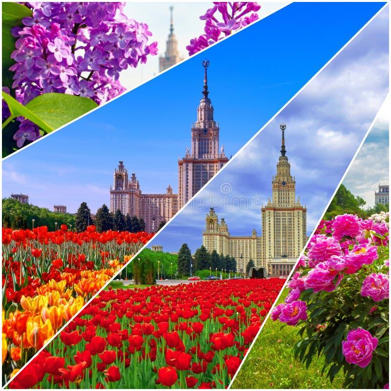 Collage von vibrierenden Ansichten der ber?hmten russischen Universit?t stockfotografie