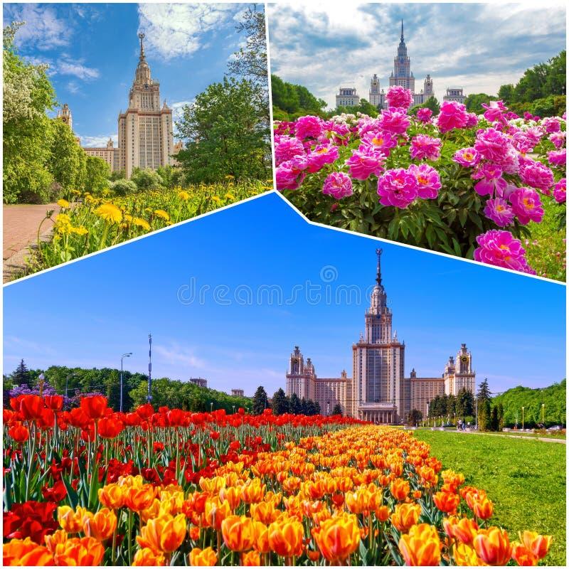 Collage von vibrierenden Ansichten der ber?hmten russischen Universit?t lizenzfreie stockbilder