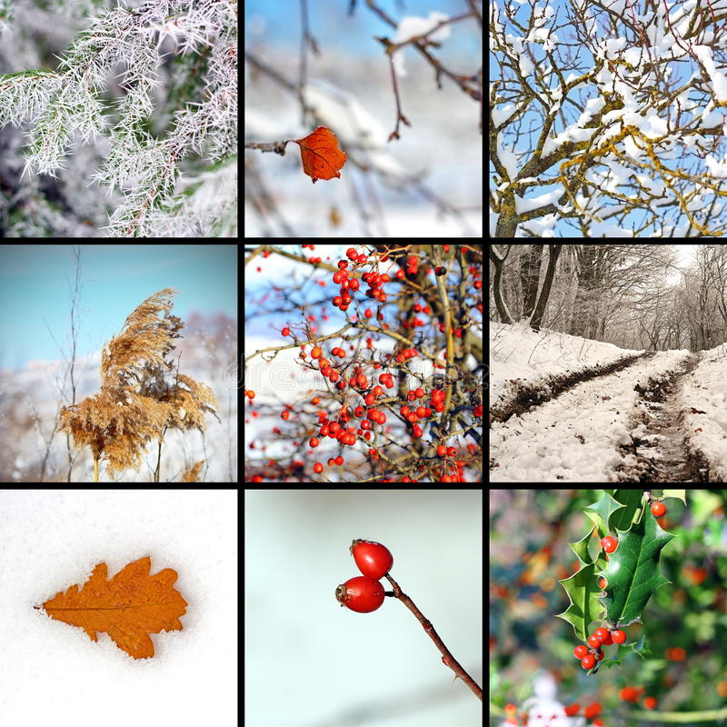 Collage with winter images stock images
