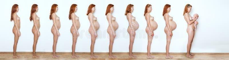 Collage zwangere vrouw die beginnen te beëindigen, negen maanden, negen stat royalty-vrije stock foto