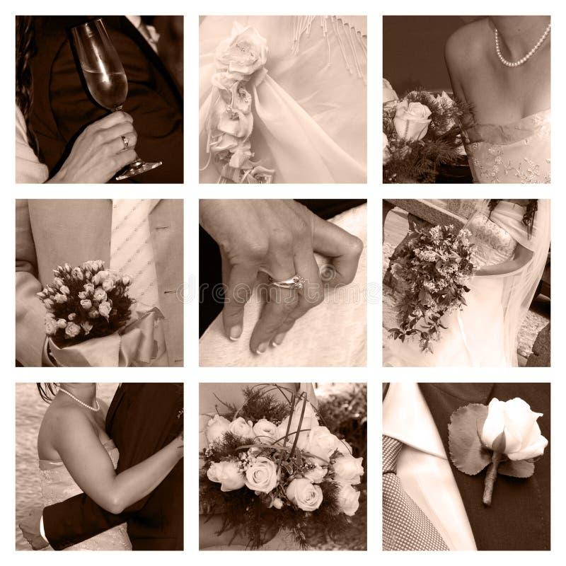 collagebröllop royaltyfri bild