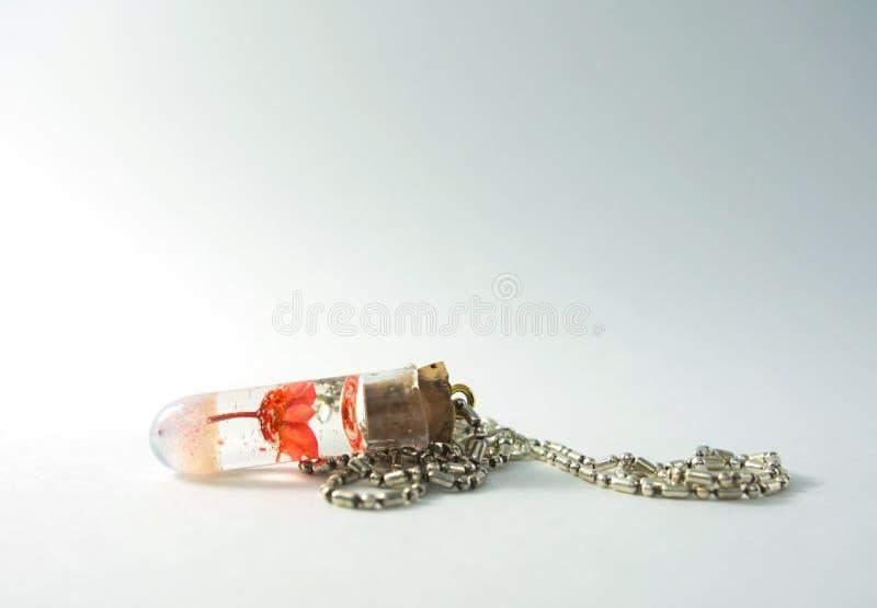 Collana con la lampadina tappata e fiore rosso in etere immagine stock libera da diritti