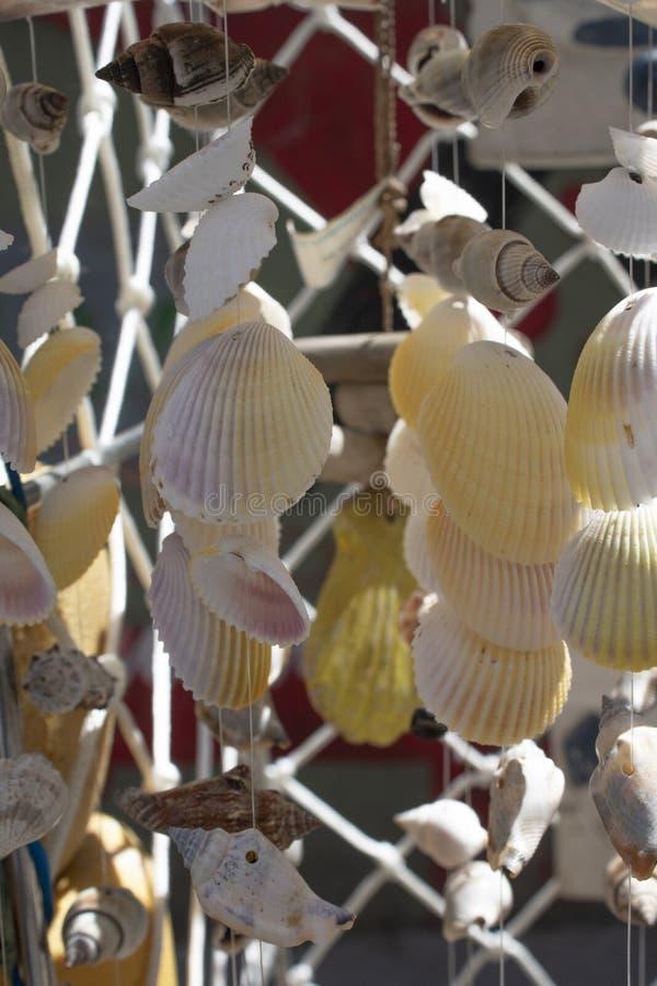 Collana fatta dalle varie conchiglie Colpo vicino fotografia stock