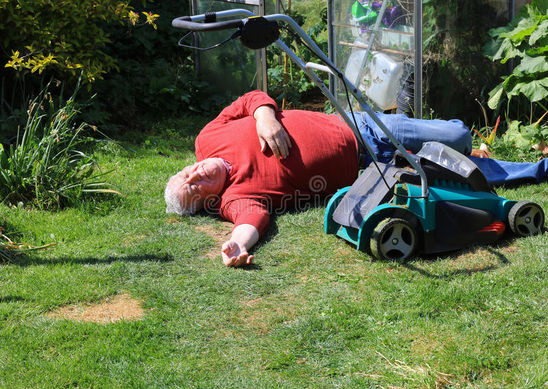 Collapsed or dead or injured senior man. A senior man lying on the ground unconscious. The man is either dead or injured and is collapsed on the lawn near a royalty free stock photography