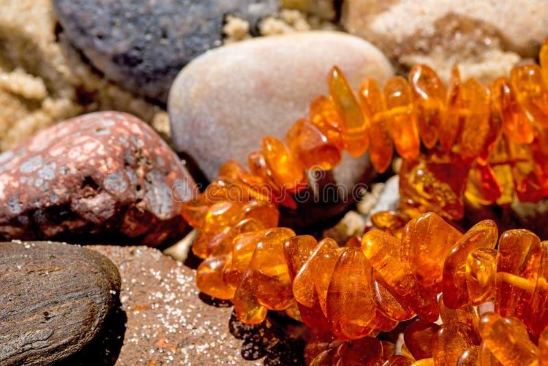Collar ambarino en una playa fotografía de archivo libre de regalías