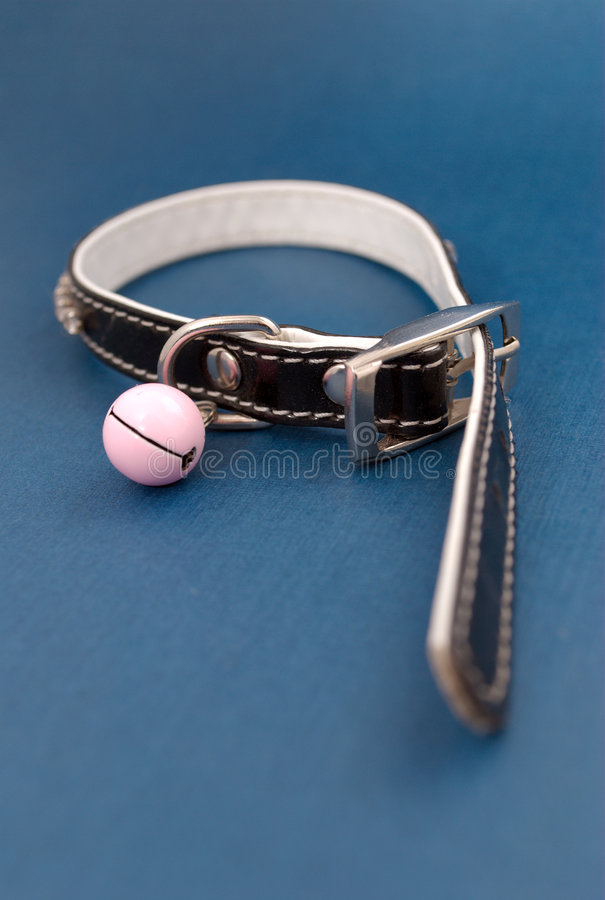 Collar with clack stock photography
