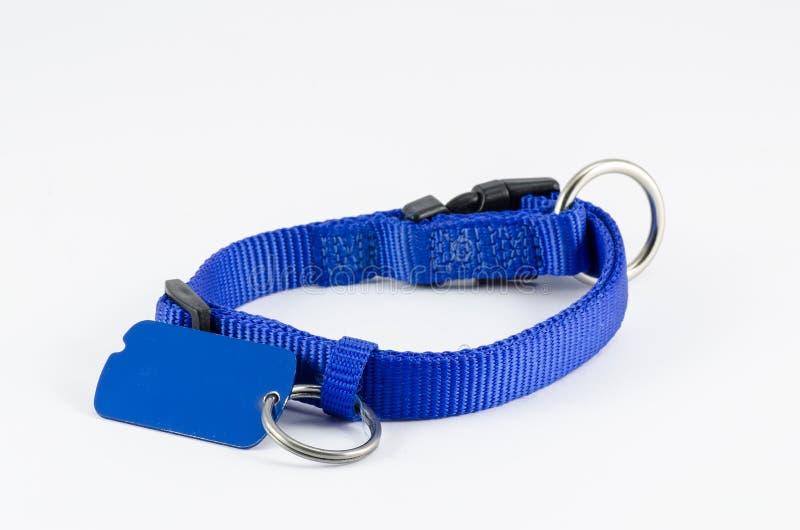 Collar y etiqueta para el perro foto de archivo