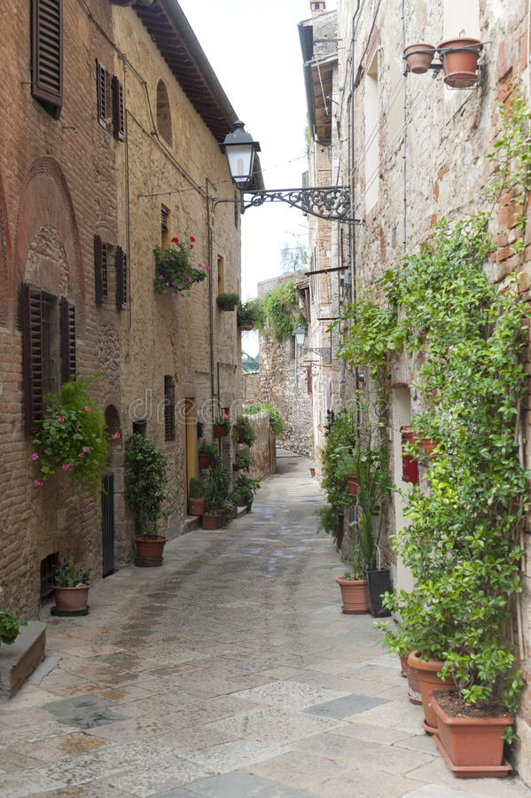 colle D di elsa siena val tuscany arkivfoton