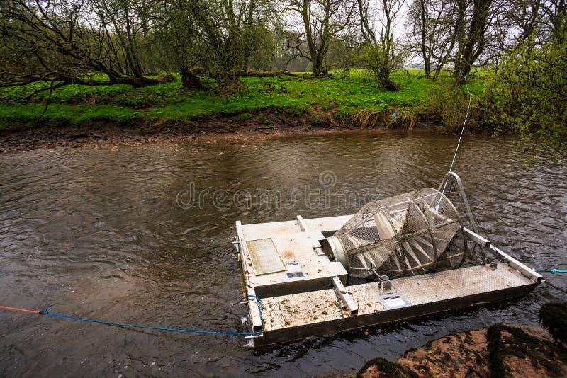 Collecteur de poissons photographie stock libre de droits
