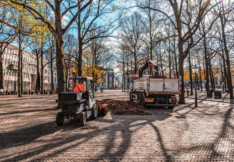 Collecting autumn leads. Environment friendly way to recycle the autumn leafs falls and clearing the city streets royalty free stock photo