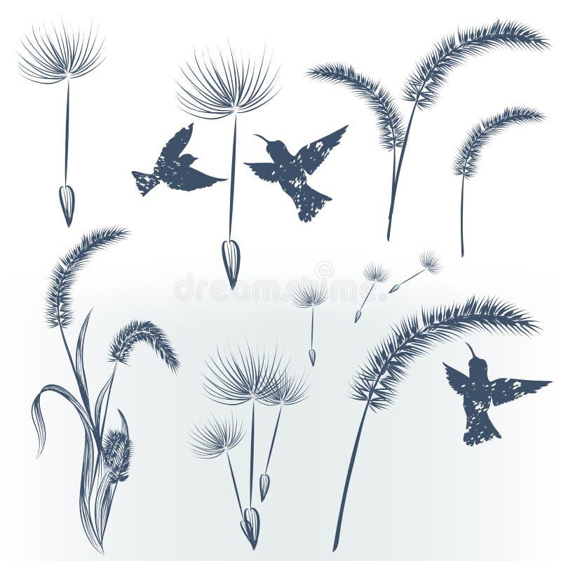 Collection élégante d'éléments floraux illustration stock