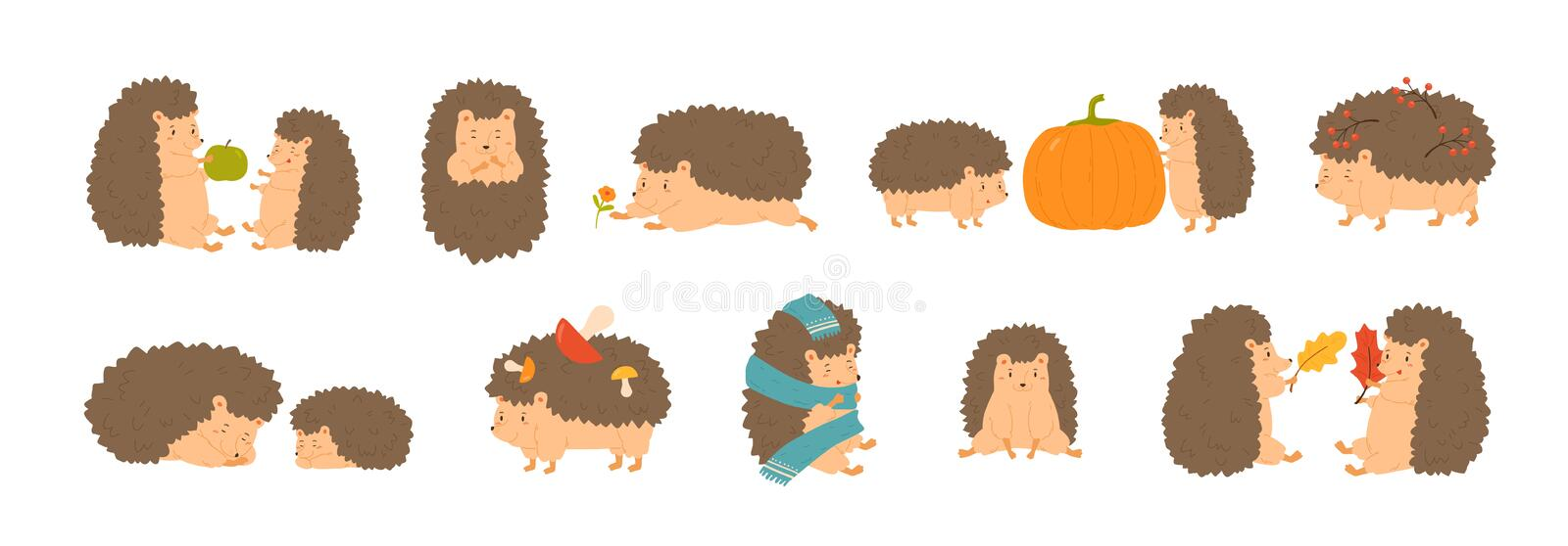 Collection of adorable hedgehogs carrying mushrooms and berries, playing with autumn leaves, sleeping. Set of cute stock illustration