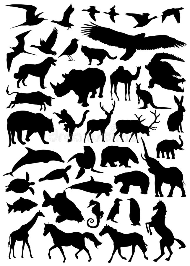 Collection of animal vector royalty free illustration