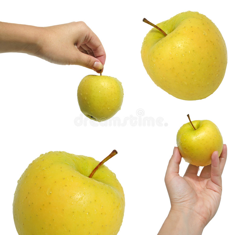 Download Collection of apples stock photo. Image of finger, energy - 7544762