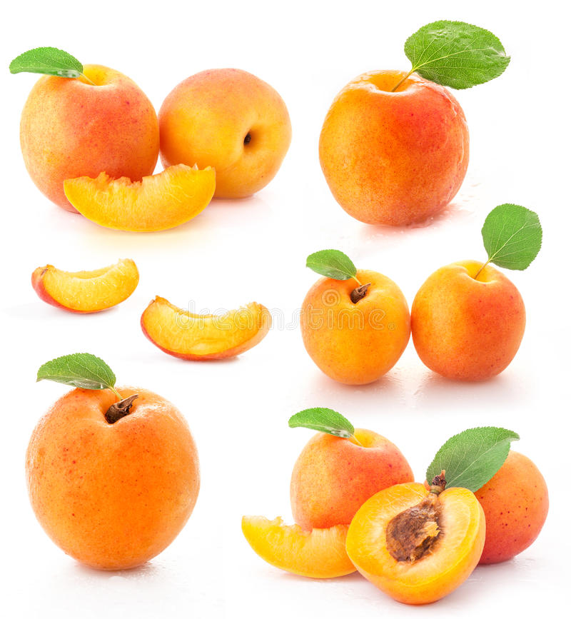 Collection of apricot fruits. Whole, slices and halves, green leaves with water drops, isolated on white background stock images