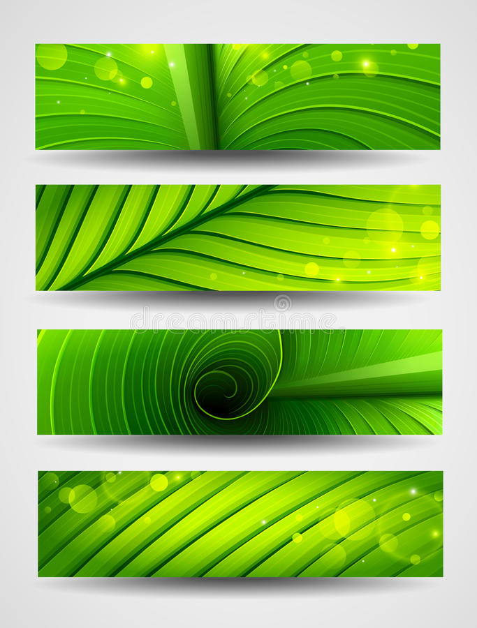 Collection of banners texture of green leaf stock illustration