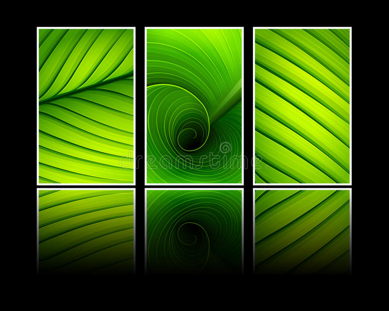 Collection of banners texture of green leaf vector illustration