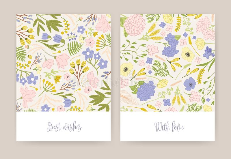 Collection of beautiful birthday greeting card or postcard templates with gorgeous colorful blooming flowers and leaves vector illustration