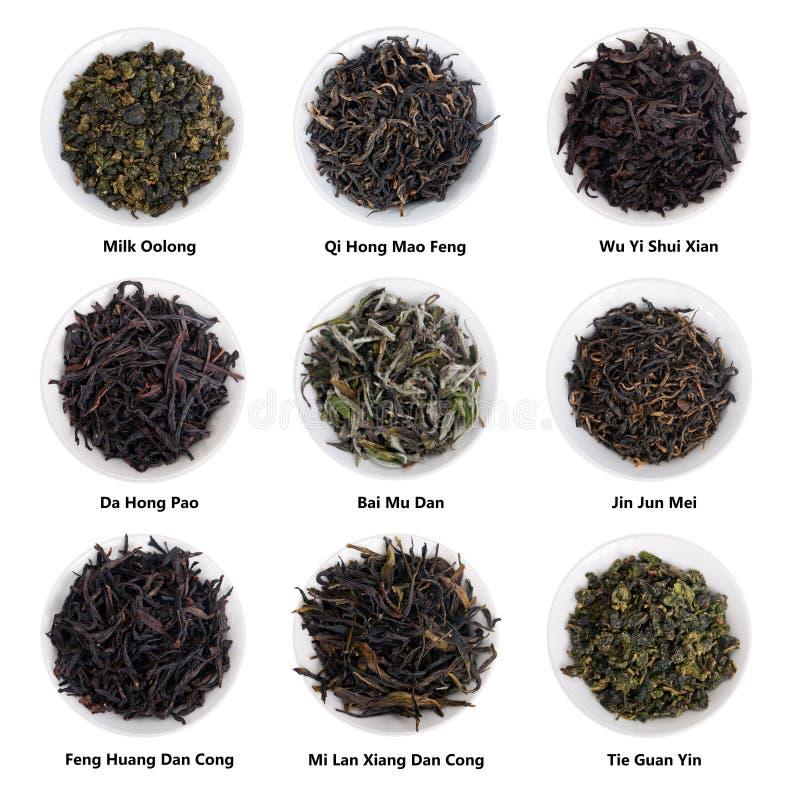 Collection chinoise célèbre de thé Variétés célèbres de thé de la Chine photo stock