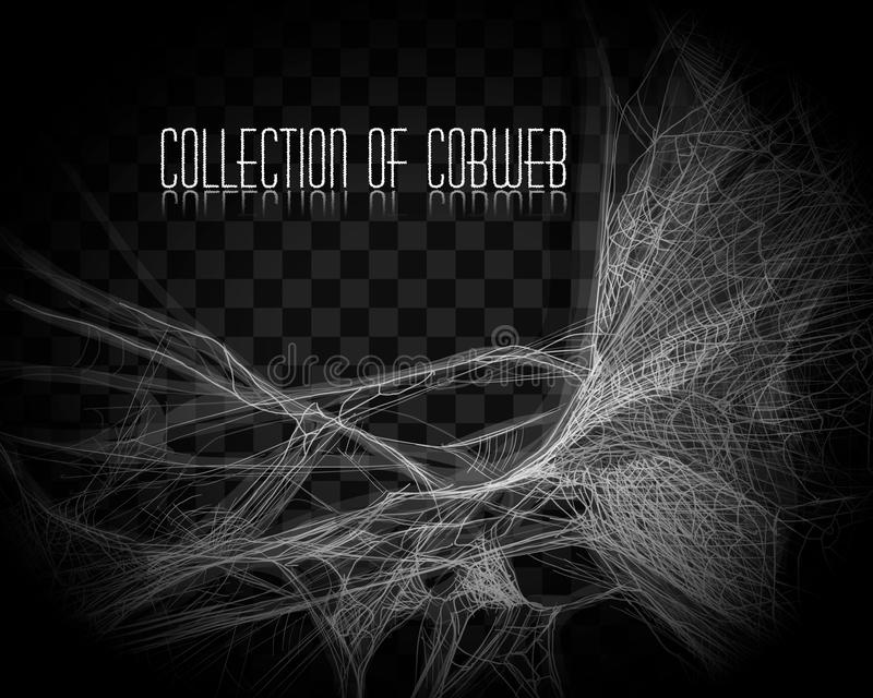 Collection of Cobweb, isolated on black, transparent background. Spiderweb for Halloween design. Spider web elements,spooky, scary vector illustration