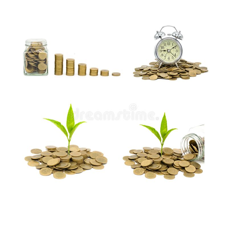 Collection of coins and money growing plant for finance and banking, saving money or interest increasing concept, isolated on royalty free stock photos