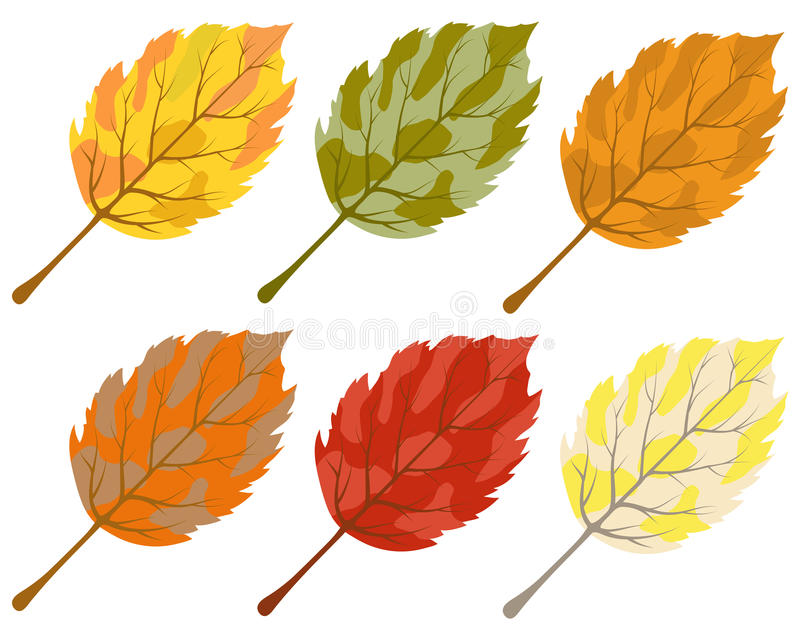 Download Collection Of Color Autumn Leaves Stock Vector - Image: 26563908