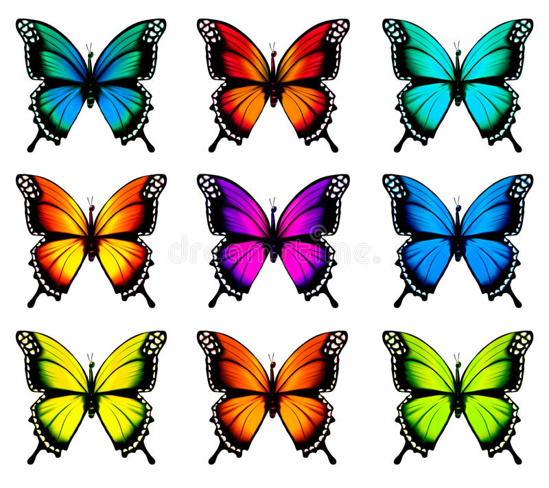Collection Of Colorful Butterflies Stock Vector - Illustration of ...