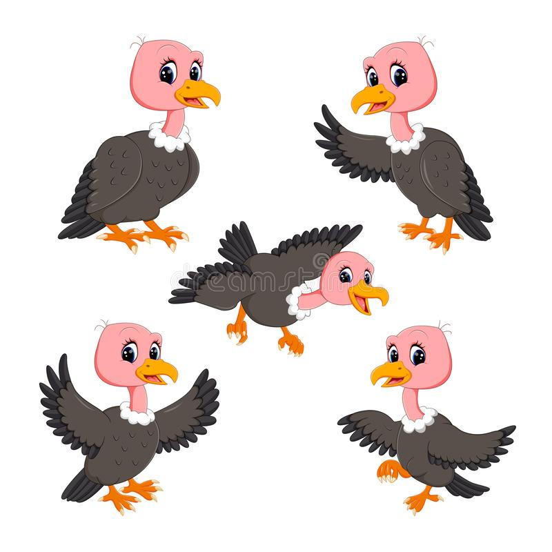 The collection of the cute baby vulture in the different posing. Illustration of the collection of the cute baby vulture in the different posing royalty free illustration