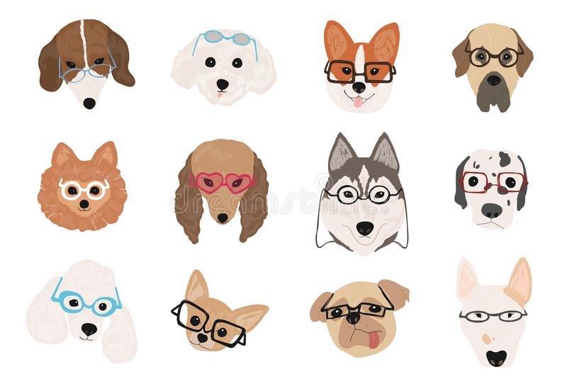 Collection of cute dogs of various breeds wearing glasses and sunglasses of different styles. Bundle of funny cartoon vector illustration