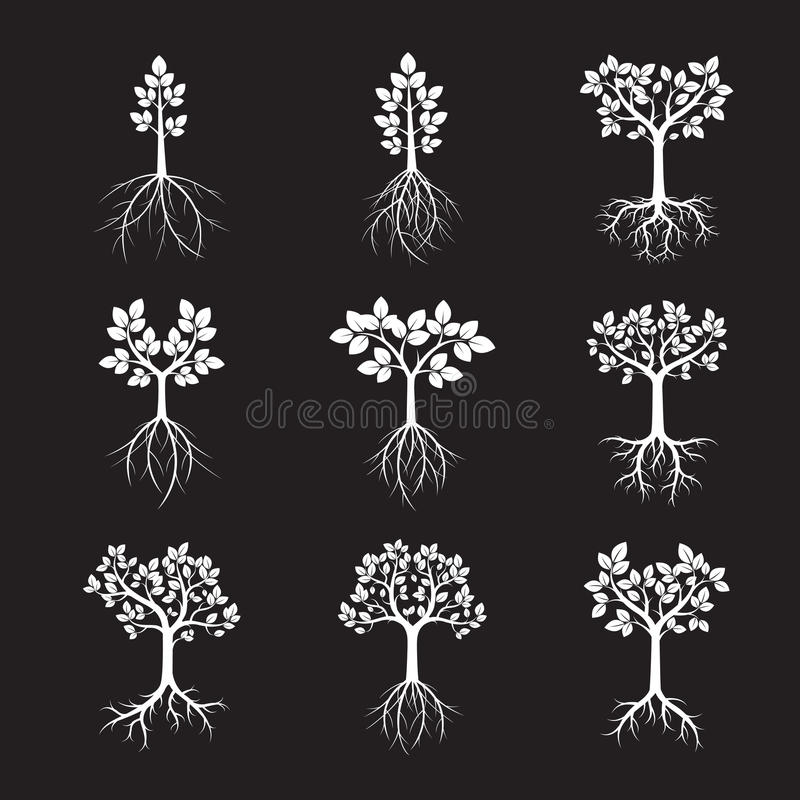 Download Collection D'arbres Et De Racines Blancs Illustration De Vecteur Illustration de Vecteur - Illustration du décoratif, type: 76087306