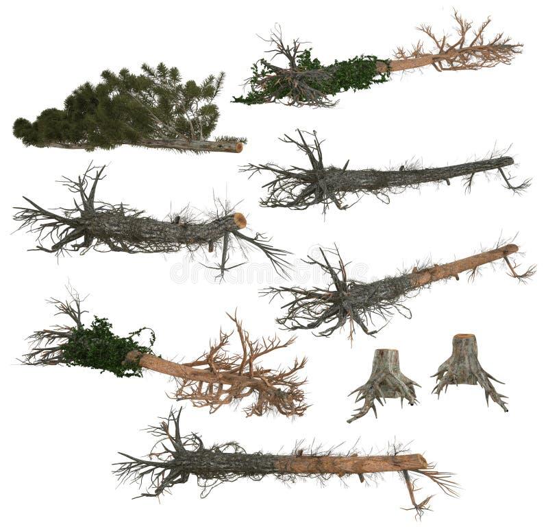Collection d'arbres et de tronçons d'arbre tombés photographie stock libre de droits