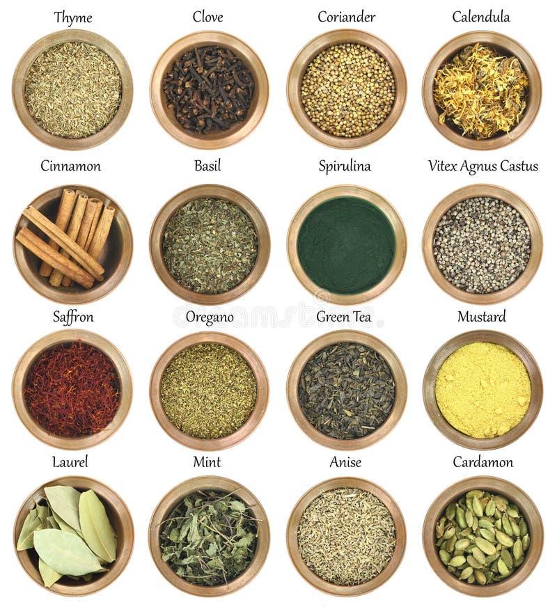 Collection d'herbes et d'épices photographie stock libre de droits