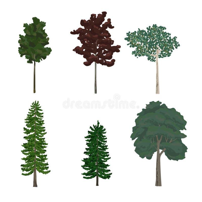Collection d'illustrations d'arbre de pin et de feuille illustration stock