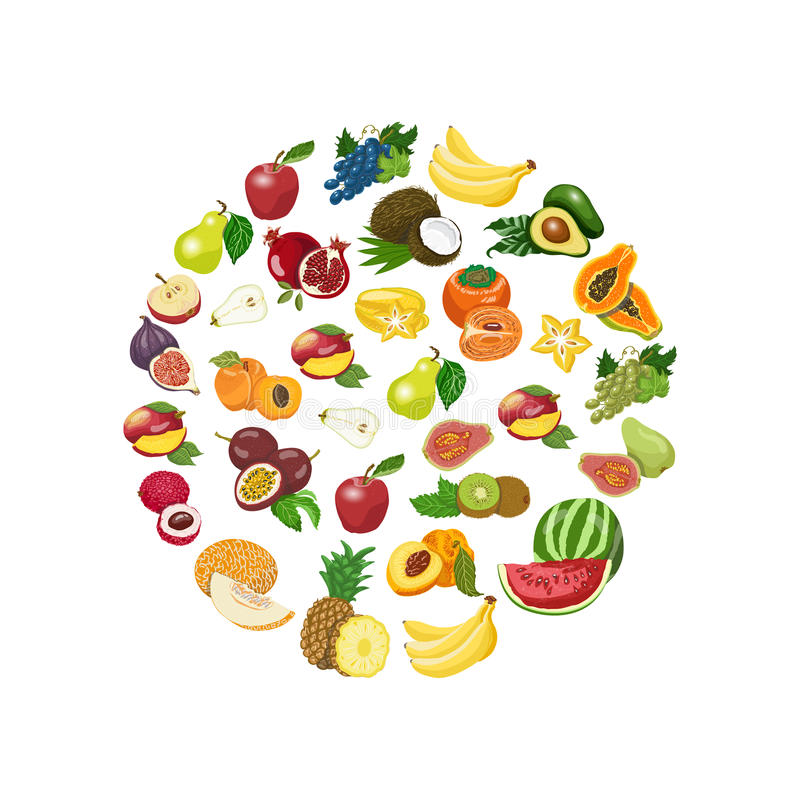 Collection d'isolement par vecteur de fruits sains frais illustration stock