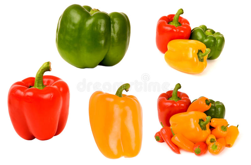 Collection de Bellpepper d'isolement photo libre de droits