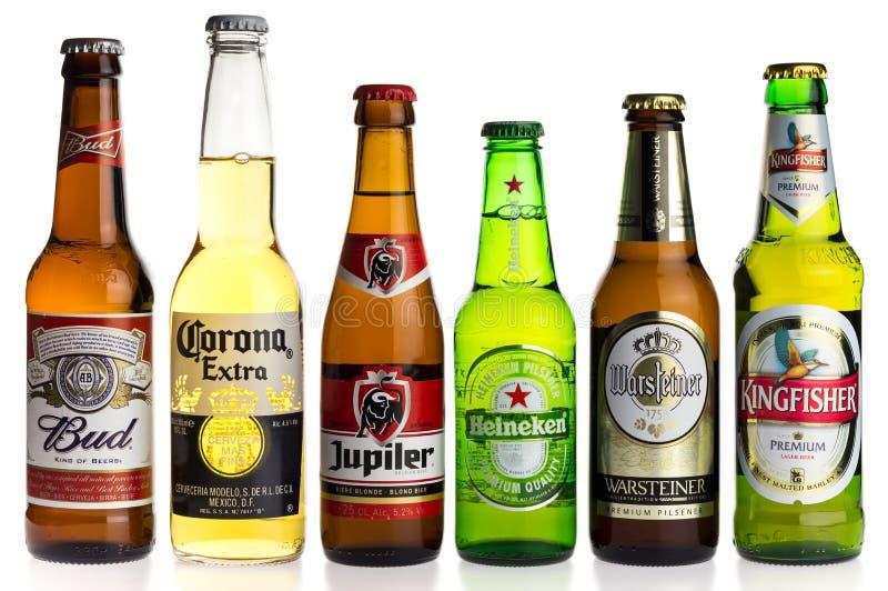 Collection de bières blondes sur le blanc photographie stock libre de droits