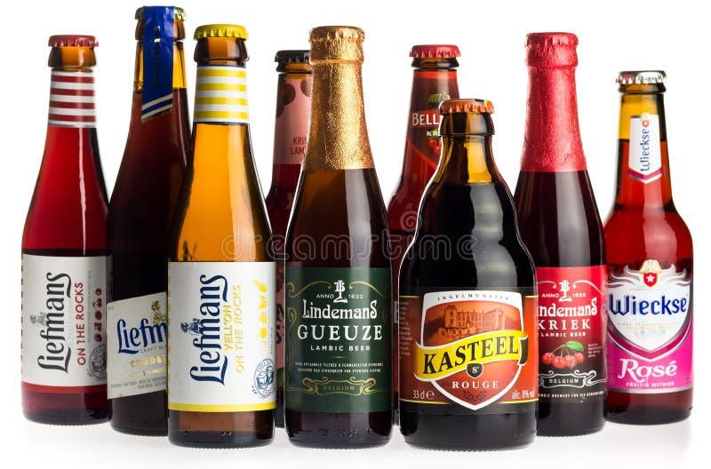 Collection de bières de fruit sur le blanc photos stock