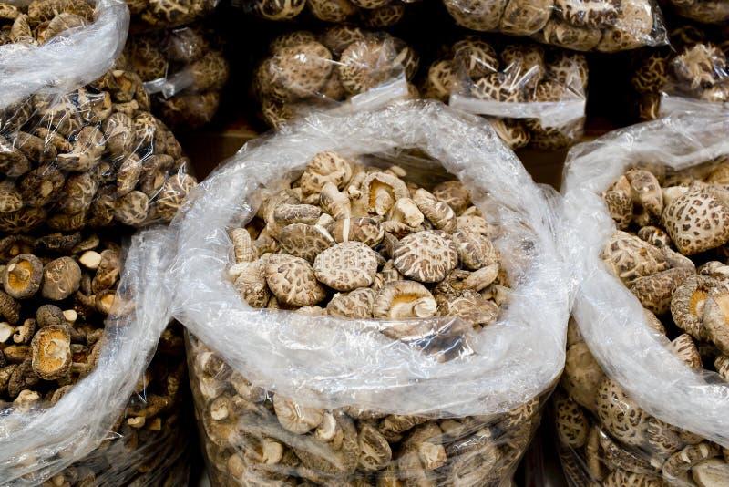 Collection de champignons secs de shitake photo stock