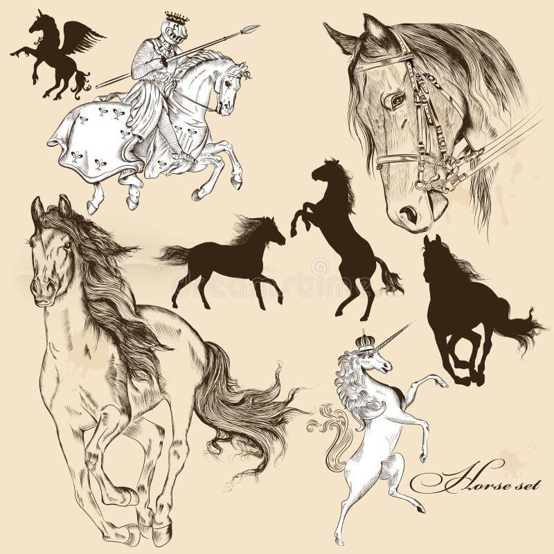 Collection de chevaux détaillés de vecteur pour la conception illustration stock