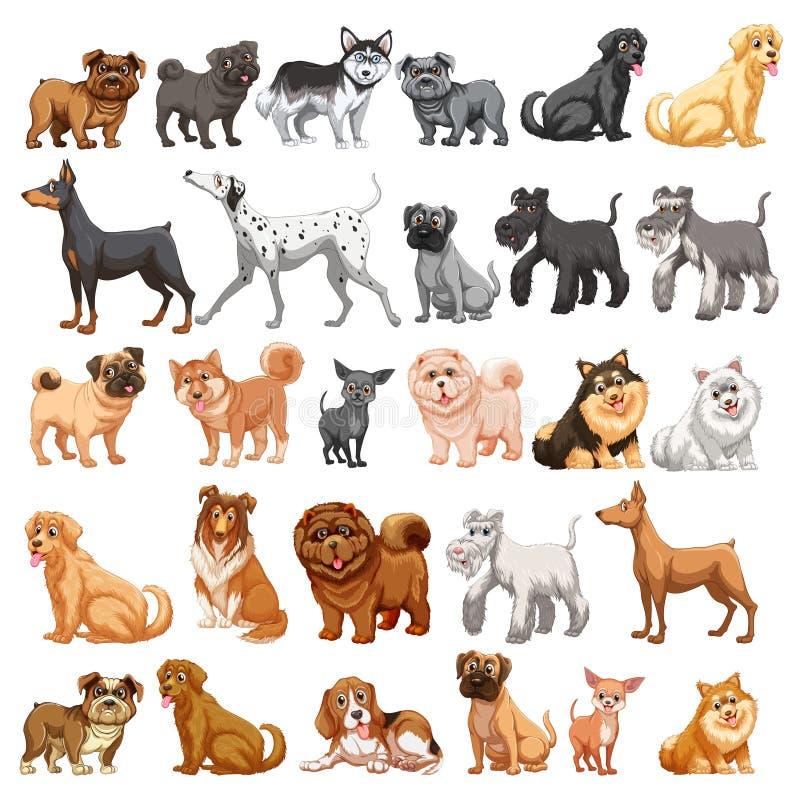 Collection de chien illustration de vecteur