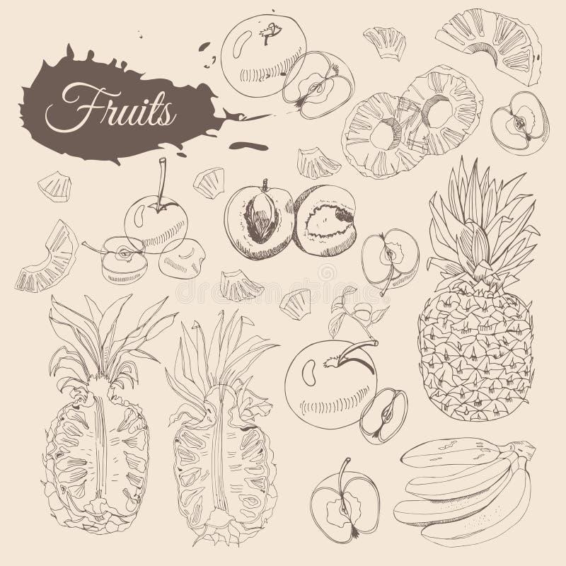 Collection de cru de différents fruits Elemets entiers et découpés en tranches sur le fond de sépia Croquis tiré par la main illustration de vecteur