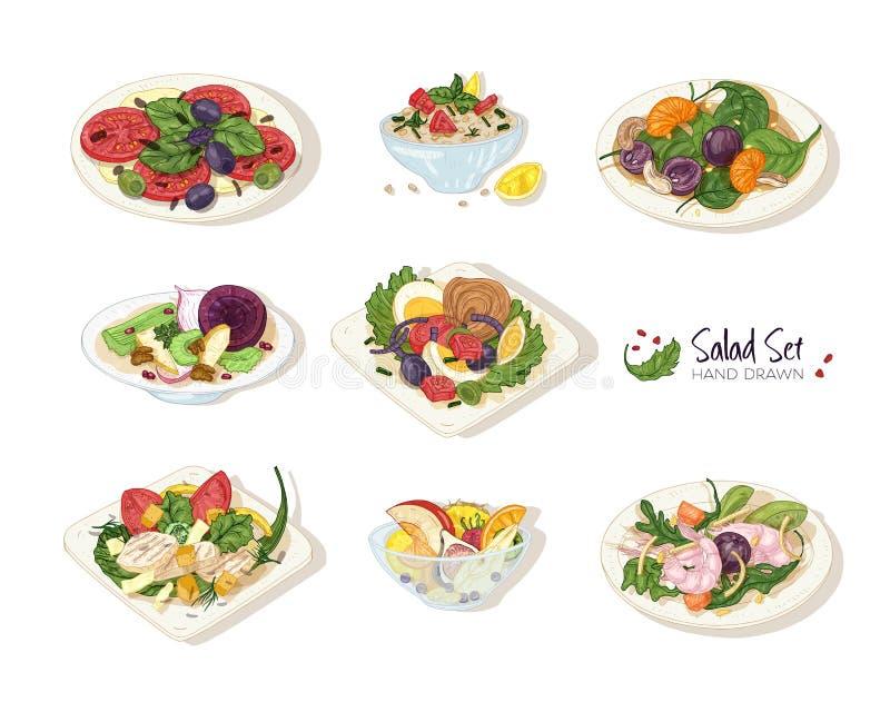 Collection de diverses salades se situant des plats et dans des cuvettes d'isolement sur le fond blanc - taboulé, Nicoise, César illustration de vecteur