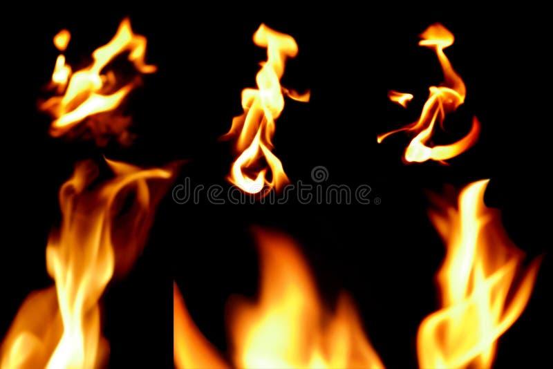 Collection de flamme du feu photographie stock libre de droits