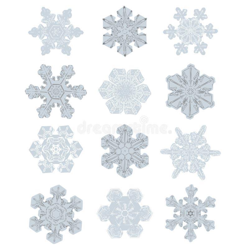 Collection de flocons de neige extrêmement détaillés Conception semblable de nature illustration de vecteur