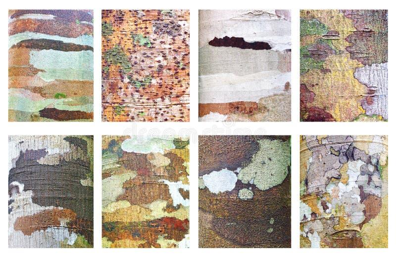 Collection de fond en bois. photo stock