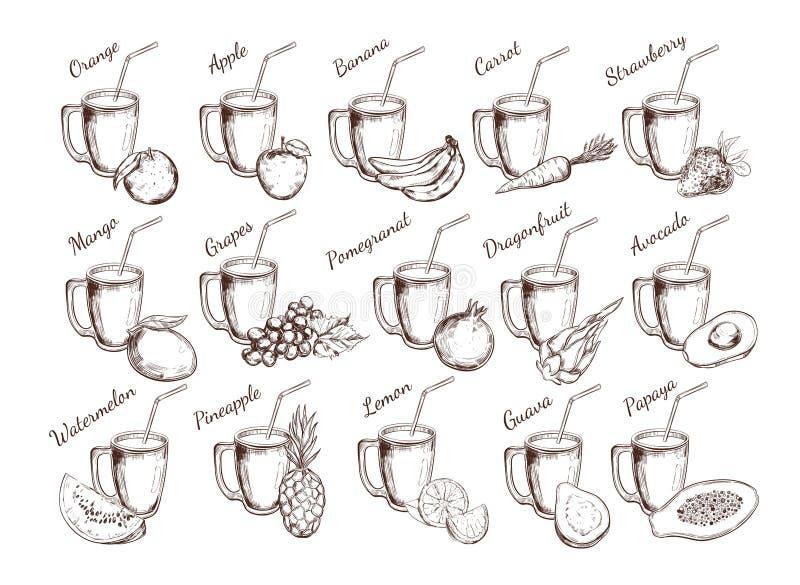 Collection de jus de fruit Illustration tirée par la main de vecteur Objets d'isolement sur le blanc illustration libre de droits