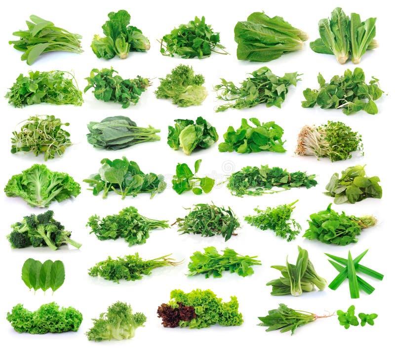 Collection de légumes sur le fond blanc photo libre de droits