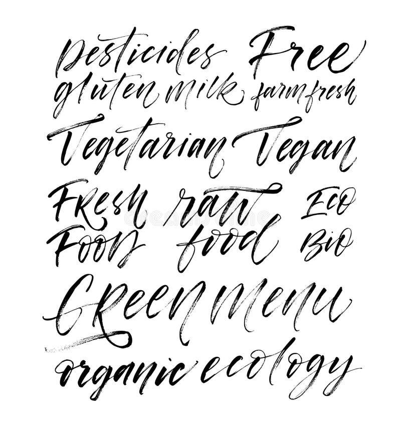 Collection de mots : végétarien, vegan, menu vert, bio, eco, nourriture organique et crue, pesticides, gluten libre, lait illustration libre de droits