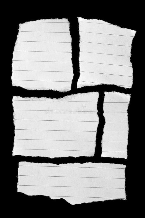 Collection de papier de larme photographie stock libre de droits