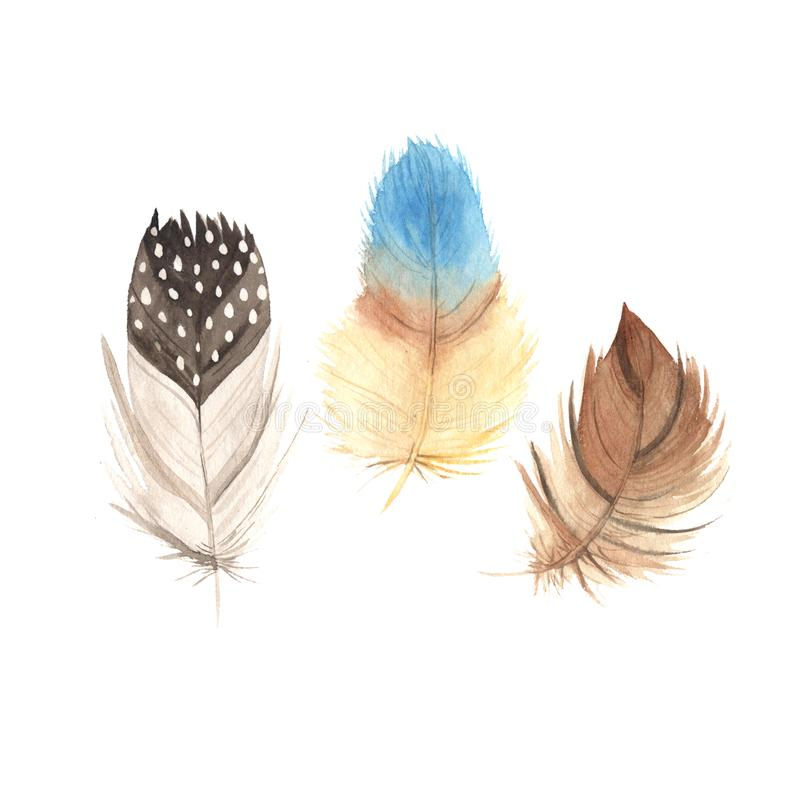 Collection de plumes de boho d'aquarelle illustration stock